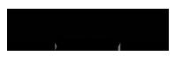 Leather Net Shop Logo